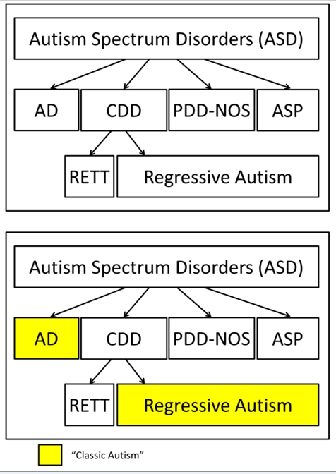 CHAPTER 2. Symptoms and Diagnosis of Autism