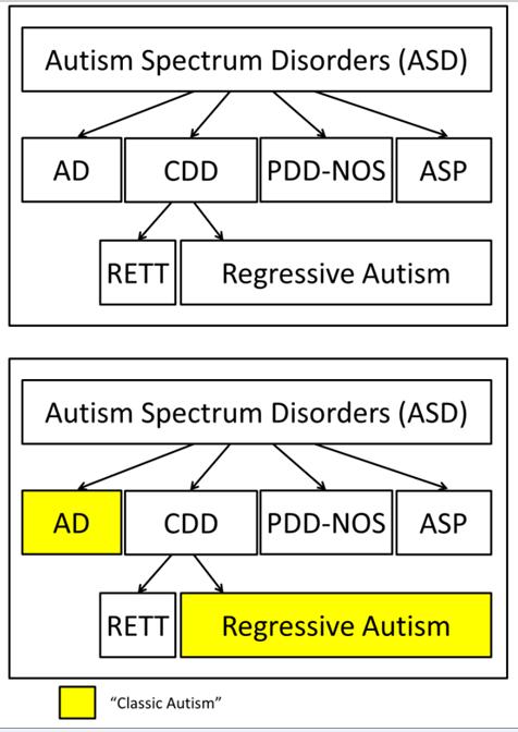 CHAPTER 2. Symptoms and Diagnosis ofAutism